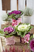 Various types of ornamental cabbages in plant pots