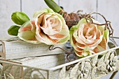 Pink amaryllis blooms on romantic metal tray