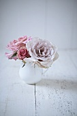 Pink roses in ceramic jug