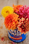 Bright, colourful bouquet of dahlias in old coffee can