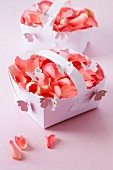 Punnets of rose petals with butterfly decorations