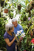 Older couple in orchid house