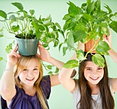 Two girls carrying potted plants on heads