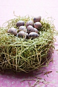 Many blown out quails egg in a nest made of hay on a table top