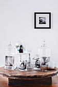 Photos of children in attractive glass jars on rustic wooden table