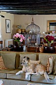 Dog on sofa in front of surface in niche covered in bric-a-brac, vases of flowers and antique bird cage