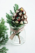 Chocolate Christmas tree lolly and conifer twig in jar