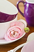 Pink ranunculus flower and bud next to stacked teacups on saucer