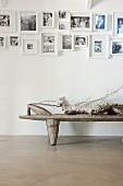 Schwarz-weisse Fotosammlung an weisser Wand über rustikalem Tisch mit darauf liegendem Schwemmholz