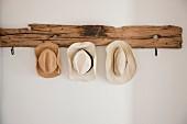 Summer hats hanging on rustic driftwood coat rack