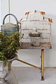 Urn in front of metal watering can and vintage birdcage on wooden bench against wall