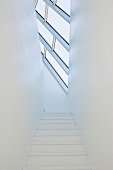 Staircase with skylight (Tower Studio, Fogo Island, Canada)