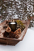Fir cones, moss and lit candle in glass holder in old metal trough on snow