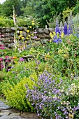 Cottage garden with flowering herbs and perennials in front of stone wall