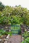 Romantic cottage garden with rose arch over blue gate in stone wall