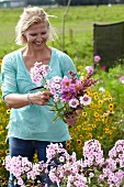 Woman picking garden flowers for bouquet