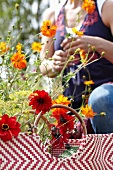 Woman cutting summer flowers in garden