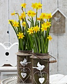 Narcissus 'Tête-à-tête' planted in metal lanterns with bird motifs on terrace table
