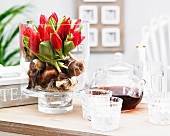 Red tulips and bulbs in glass vase