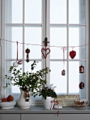 Vintage vases of flowers on window sill with Christmas decorations