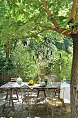 Rustic table and vintage metal chairs under candle chandelier hanging from tree in Mediterranean garden
