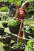 Woman watering plants in garden buckets hanging from ropes