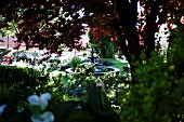 View through bushes of fountain in landscaped garden with flowering plants