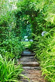Narrow, paved garden path lined with grasses leading through climber-covered archway