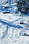 Snowy Backyard with Sledding Tracks