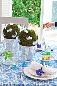 Balls of moss with white feathers in flower pots as centrepiece of Easter table