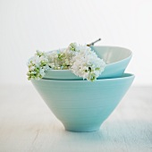 White lilac in pale blue ceramic bowls