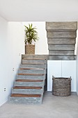 Concrete staircase with wooden treads and potted palm on landing