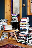 Black cat in front of tall stacks of books