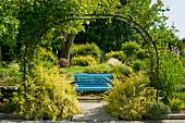View through a vine covered archway in a Mediterranean garden of a blue wooden bench