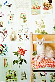 Kitten on chair against vintage-style wallpaper with pattern of flowers and animals