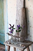 Arrangement of clematis flowers in three glass bottles with driftwood branch in front of upright driftwood pieces on wooden stool in vintage ambiance