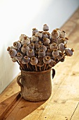 Poppy seed heads in clay vase on rustic wooden floor