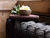 Nostalgic book with a flower pot, succulents and a wedding ring on an old radiator in front of a paneled wall