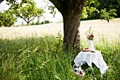 A festive table in long grass with a cake and a bunch of summer flowers