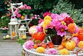 Autumnal patio decoration with asters, dahlias, ornamental squash and lanterns