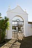Wrought iron gate in masonry portal; cobbled courtyard with palm tree