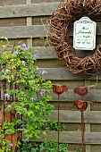 Blooming climber on a metal trellis, bird-shaped garden ornament stakes and willow wreath on a wooden fence in the garden