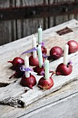Halved red onions used as candlesticks on weathered wooden slats
