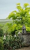 Nesting box on garden wall