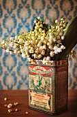 Posy of lily of the valley in old printed tin on dark wooden table top against pale blue patterned wallpaper
