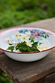 Anemones in old enamel bowl on wooden table in garden