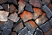 Stacked firewood (detail)
