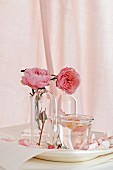 Stillleben mit Rosenwasser & Rosenblüten in Glasväschen