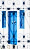 White house with blue windows & doors (Sidi Bou Said, Tunisia)