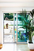 House plants in front of sliding French doors; view of sunny terrace with colourful plastic chairs
